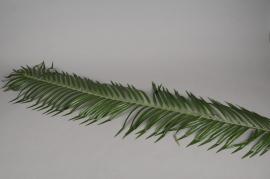 x052vb Feuille de phoenix artificiel vert H110cm