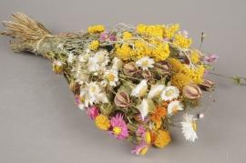 x055kh Bouquet de fleurs séchées jaune H50cm
