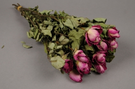 x057dn Pink dried roses H50cm