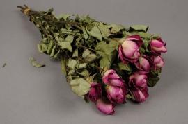 x057dn Botte de rose rose séchée H50cm