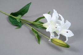 x070am Lys artificiel blanc H70cm