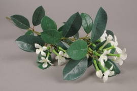 x073am Stephanotis artificiel blanc H70cm