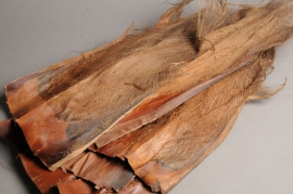 x077ab Pack of natural dried palm fiber