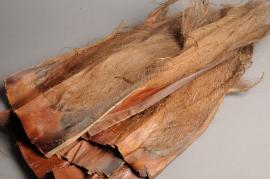 x077ab Sachet de fibres de palmier