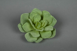 x084fd Echeveria artificiel vert clair H12cm