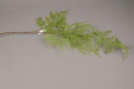 x085ee Branche de fougère asparagus artificielle L100cm