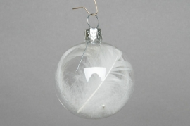 X098T1 Box of 6 transparent baubles + feather D6cm