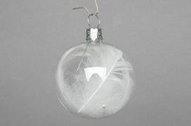 X098T1 Boîte de 6 boules transparentes + plumes D6cm