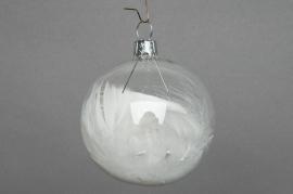 X099T1 Boîte de 6 boules transparentes + plumes D8cm