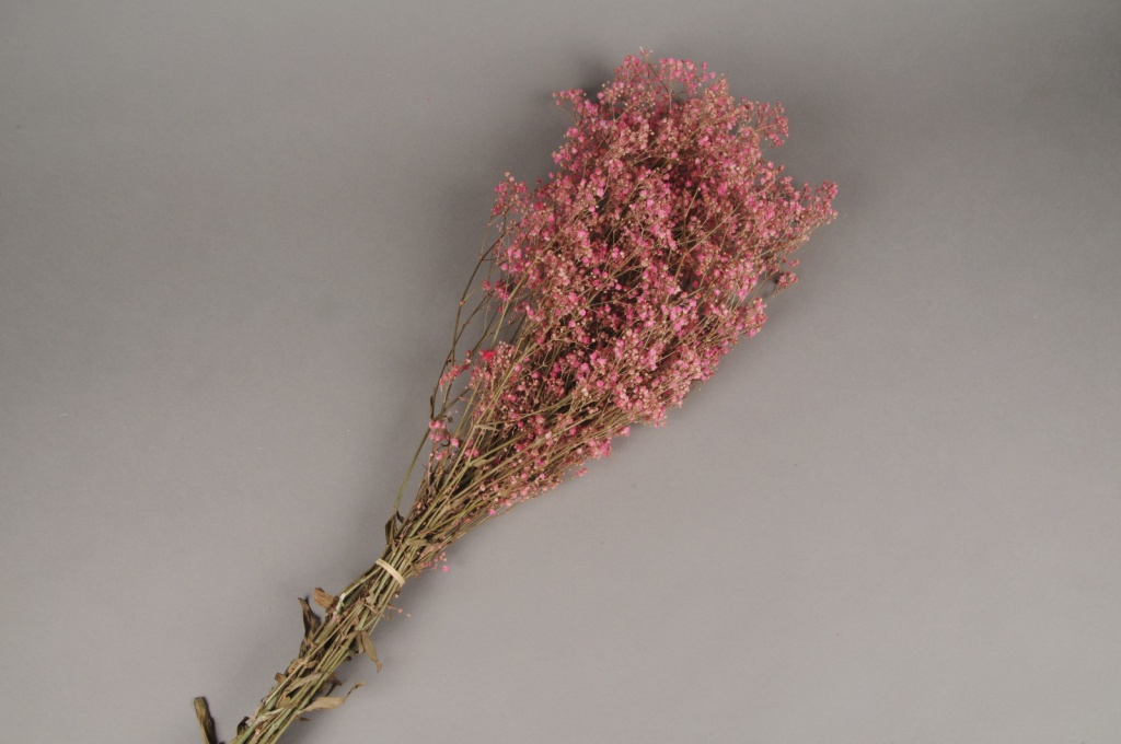 x102ab Gypsophile paniculé préservé rose H75cm