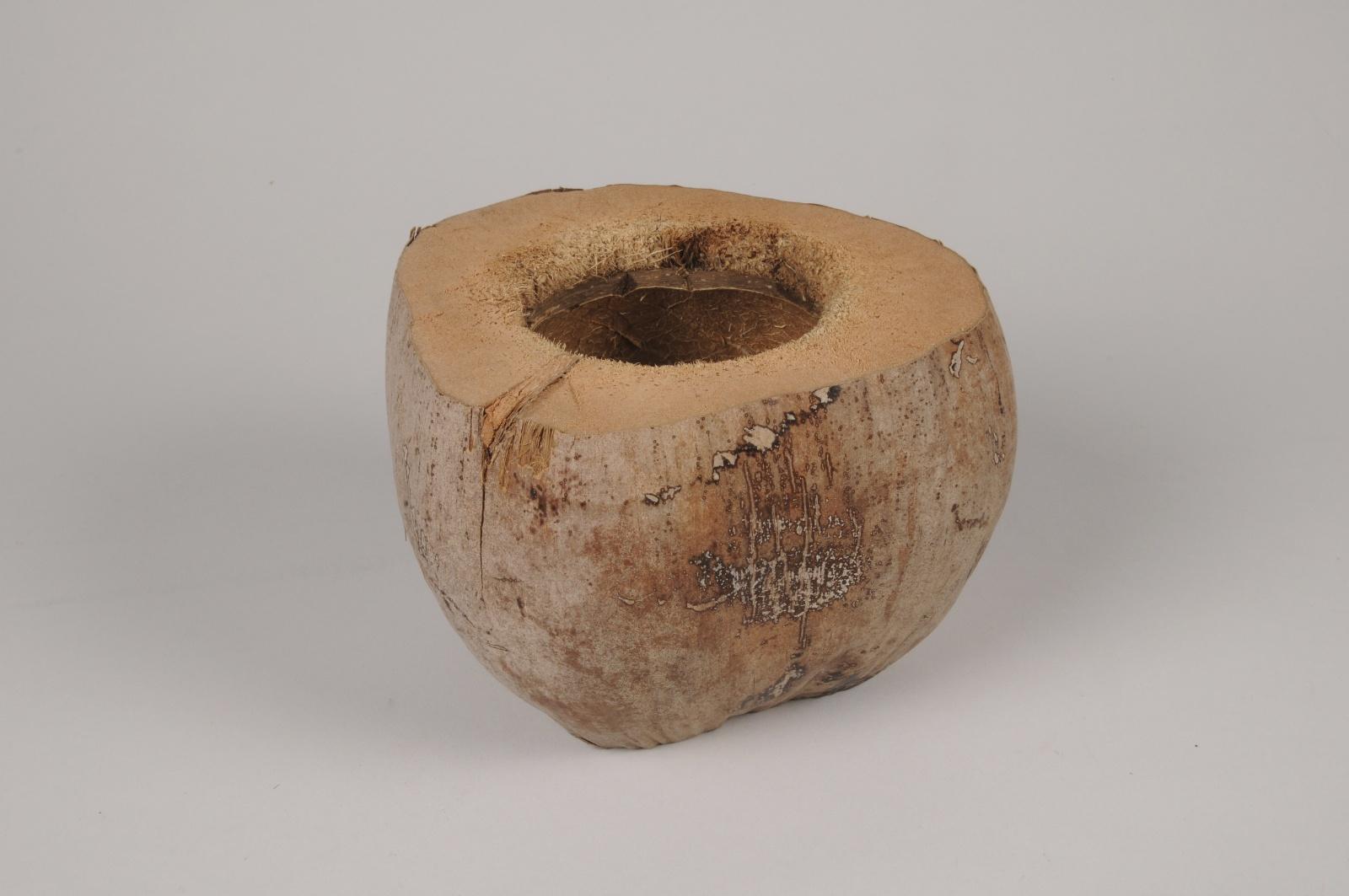 x104ec Natural coconut D18cm H12.5cm