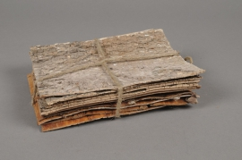 x105wg Paquet de 10 écorces de bouleau naturel 20x15cm