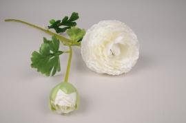 x108am Renoncule artificielle blanc crème H75cm