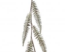 X120KI Guirlande de feuilles vertes H120cm