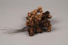 x130wg Boîte de 120 sets de 3 pomme de pin naturel