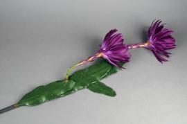 x146el Fleurs de cactus artificielle violet 123cm