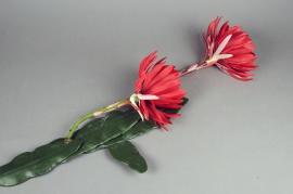 x147el Fleurs de cactus artificielle rouge 123cm