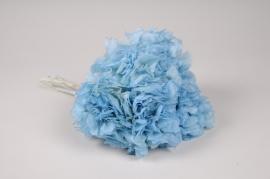 x153ab Hortensia préservé bleu ciel H33cm