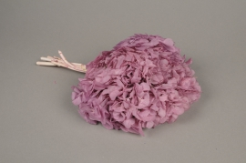 x154ab Pink preserved Hortensia H33cm
