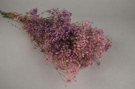 x158ab Purple preserved gypsophilia H75cm