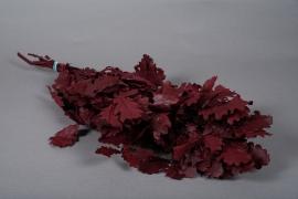 x165ab Red preserved oak leaves H60cm