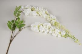 x181am Glycine artificielle blanche H145cm