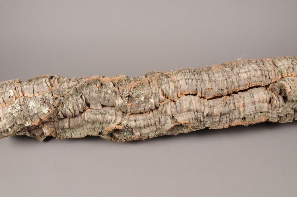 x188wg Ecorce de liège séchée naturelle D16cm L95cm