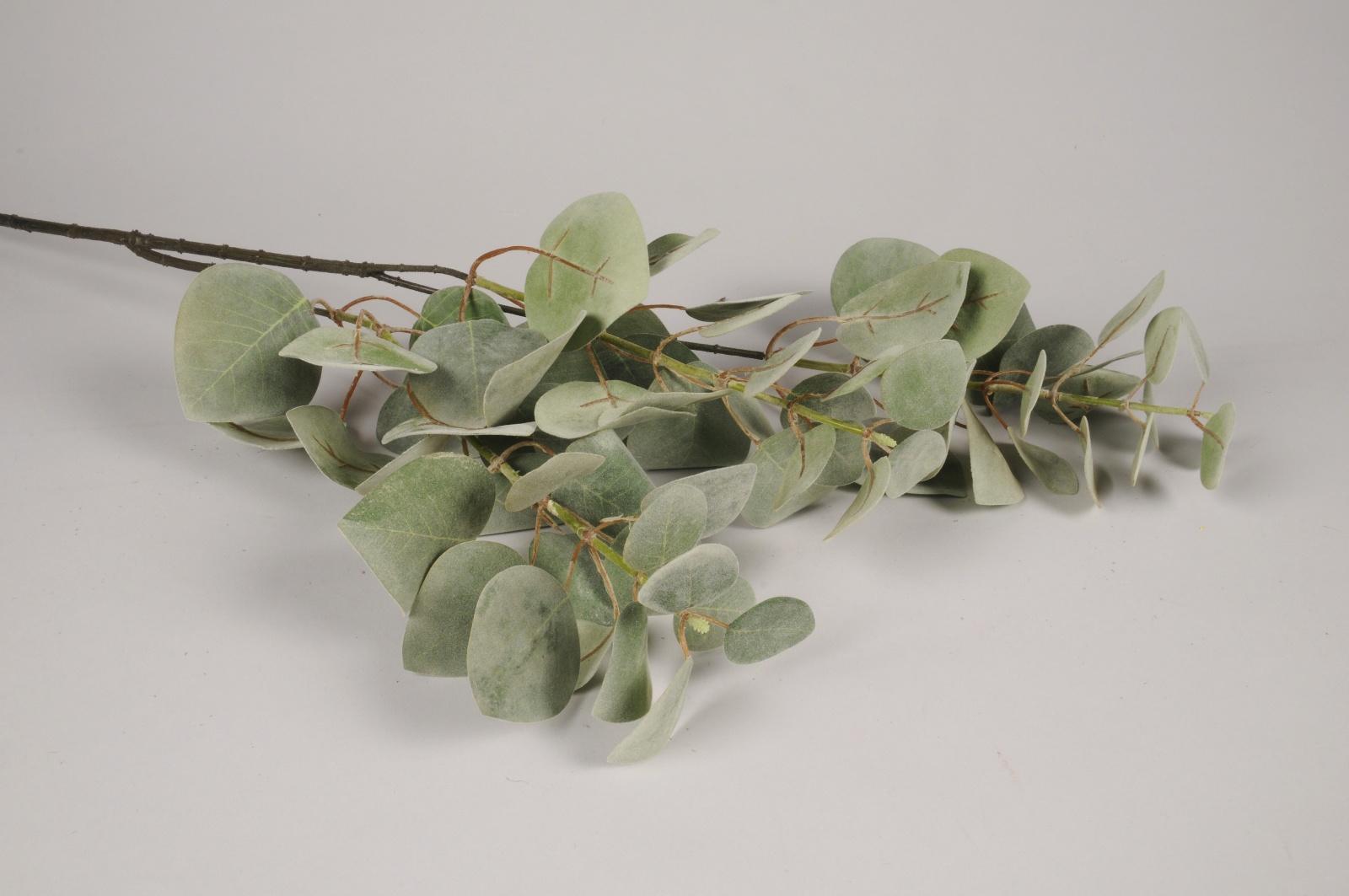 x200am Eucalyptus artificiel vert H98cm