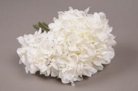 x208fd bouquet d'hortensia artificiel blanc H25cm