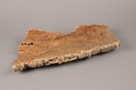 x216wg Dried cork bark 22cm x 50cm