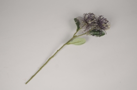 x221am Protea artificiel violet H49cm