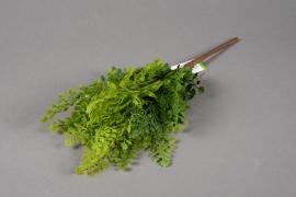 x224ee Artificial pick of fern H42cm
