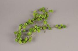 x225fd Guirlande de succulente artificielle verte H180cm