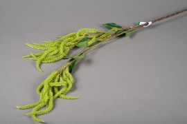 x232ee Artificial green amaranth 110cm