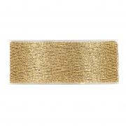 X233UN Shiny gold meshes ribbon 40mm x 10m