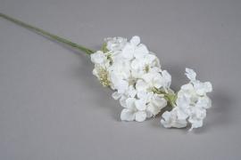 x239fd White artificial hydrangea H63cm