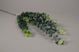 x260fd Branche d'eucalyptus artificiel vert H87cm