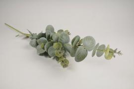 x261ee Branche d'eucalyptus artificiel vert H75cm