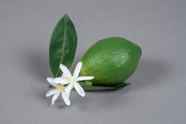x261fd Citron vert artificiel fleurit D6cm