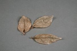 X262UN Set de 3 feuilles en métal champagne H6cm