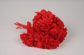 x278ab Hortensia préservé rouge vif H35cm