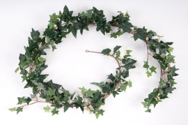 x278wh Pack of 3  ivy garlands H180cm