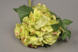 x300fp Hortensia artificiel vert H45cm