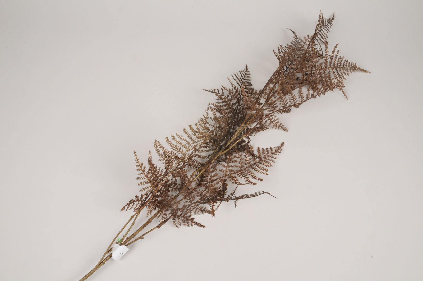 x331ee Branche de fougère asparagus artificielle marron H110cm