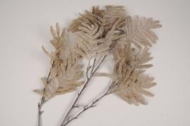 x332ee Brown artificial mimosa leaf H115cm