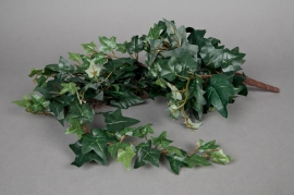 x333wh Ivy pick H65cm