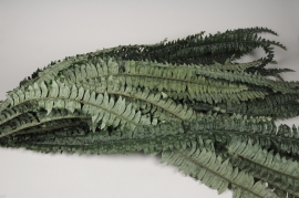 x335wh Artificial green fern H150cm