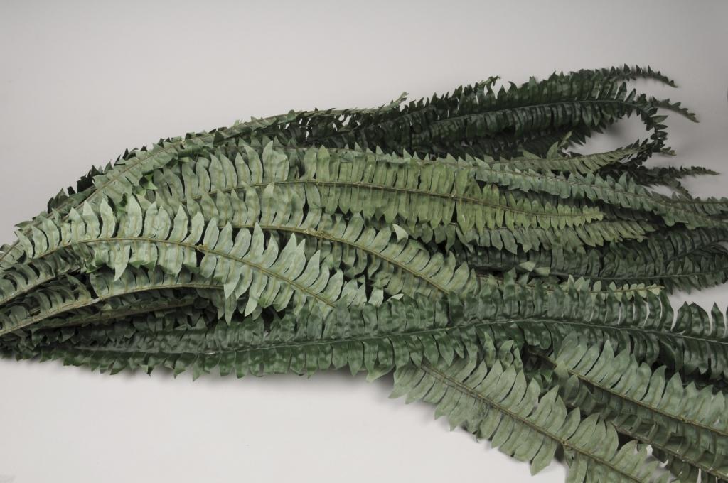 x335wh Fougère artificielle verte H150cm