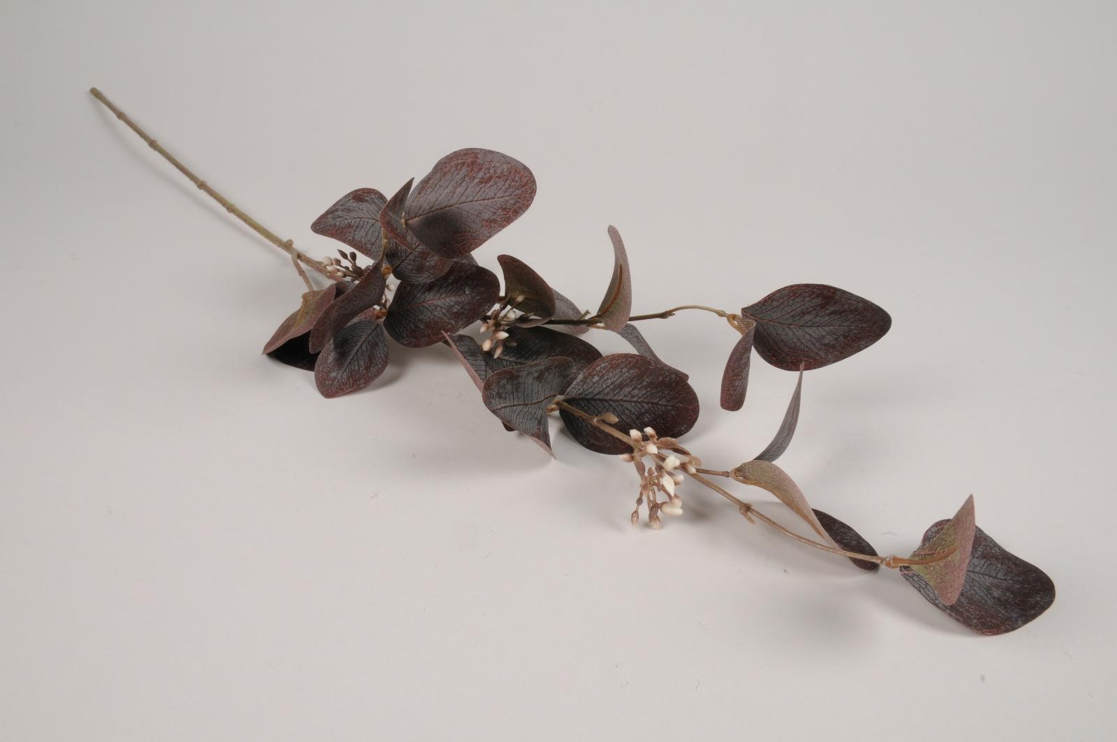 x475ee Eucalyptus artificiel pourpre H75cm