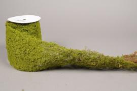 x480di Rouleau de mousse artificielle H200cm